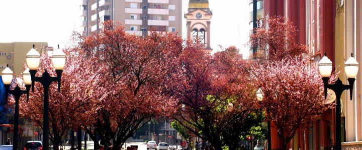 Bento é eleita uma das 20 cidades mais bonitas do Brasil