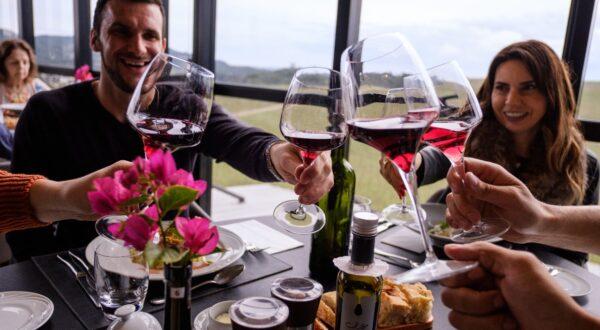 Wine South America promove Circuito do Vinho inédito que contempla visitas a 14 vinícolas da Serra Gaúcha
